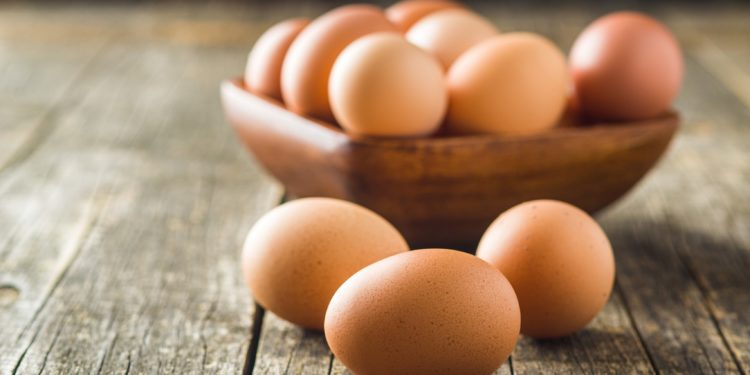 Update Egg Recall In The Case Of Edeka All Of The Samples Correctly Naturopathy Naturopathy Specialist Portal All My Medicine